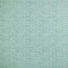 Aruba Decorator Fabric by Silver State