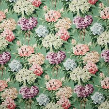 Jardin Traditional Decorator Fabric by Pindler