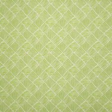 Lime Decorator Fabric by Pindler