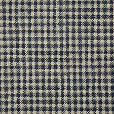Ink Check Decorator Fabric by Pindler