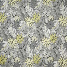 Sterling Damask Decorator Fabric by Pindler