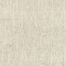 Birch Decorator Fabric by Scalamandre