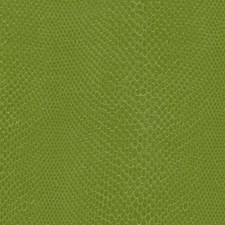 Lime Skins Decorator Fabric by Kravet