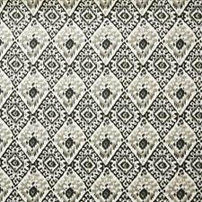 Bark Ethnic Decorator Fabric by Pindler