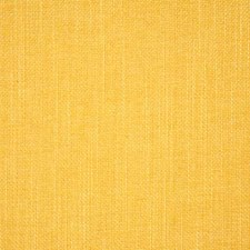 Soleil Solid Decorator Fabric by Pindler