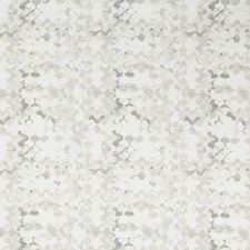 Dove Modern Decorator Fabric by Kravet