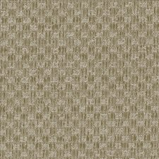 Suede Decorator Fabric by Kasmir