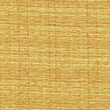 Brass Decorator Fabric by RM Coco