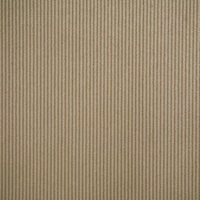 Sanddune Solid Decorator Fabric by Pindler