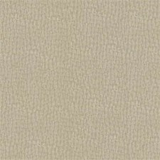 Beige Solid W Decorator Fabric by Kravet