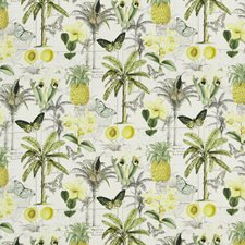Citrus Print Decorator Fabric by Baker Lifestyle