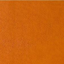 Canyon Animal Skins Decorator Fabric by Kravet
