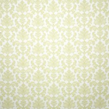 Citrus Damask Decorator Fabric by Pindler