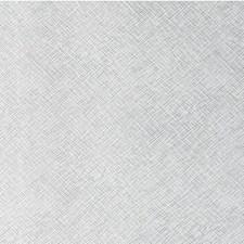 Moondance Metallic Decorator Fabric by Kravet