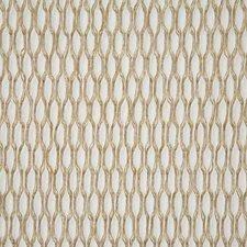 Raffia Decorator Fabric by Pindler
