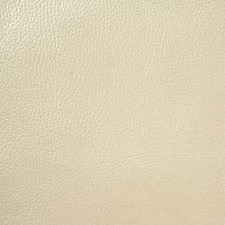 Shimmer Decorator Fabric by Pindler
