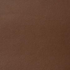Mahogany Decorator Fabric by Pindler