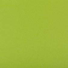 Matcha Solids Decorator Fabric by Kravet