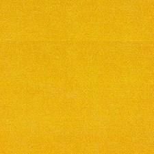Sunshine Decorator Fabric by Kravet