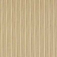 Grove Decorator Fabric by Robert Allen