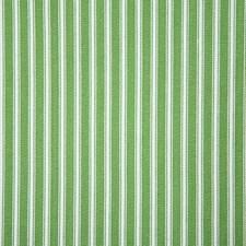 Kiwi Stripe Decorator Fabric by Pindler