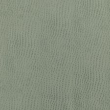 Foam Decorator Fabric by Silver State