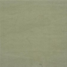 Grey/Light Green Solids Decorator Fabric by Kravet