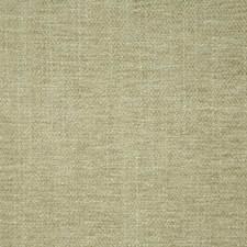Aloe Decorator Fabric by Pindler