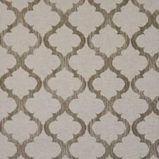 Safari Decorator Fabric by Maxwell