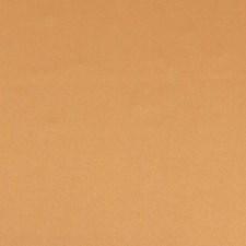 Orange/Rust Plain Decorator Fabric by JF
