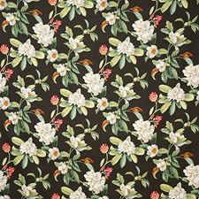 Nightfall Traditional Decorator Fabric by Pindler