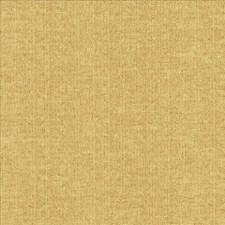 Tostada Decorator Fabric by Kasmir
