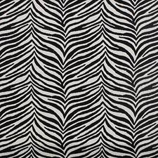 Black/White Decorator Fabric by Scalamandre