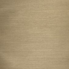 Olive Texture Raised Wallcovering by Stroheim Wallpaper