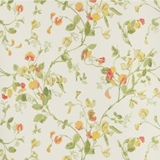 Pink/Yellow Wallcovering by Cole & Son Wallpaper