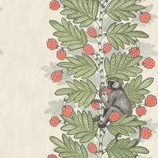Green/Coral Berries Print Wallcovering by Cole & Son Wallpaper