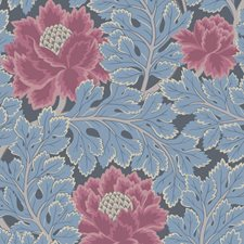 Cerise/Cerulean Bl Botanical Wallcovering by Cole & Son Wallpaper