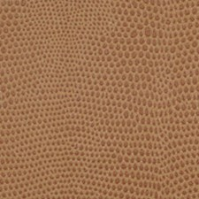 Tan Wallcovering by Innovations