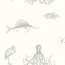 Grey Coastal Wallpaper Wallcovering by Brewster