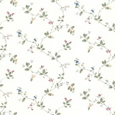 414-49289 Olivia White Floral Trail by Brewster