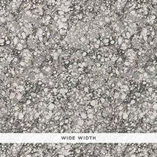 Carrara Wallcovering by Schumacher Wallpaper