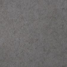 5305404 50009W Joyous Gargoyle 04 by Fabricut