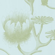 Sage/Pale Blue Wallcovering by Cole & Son Wallpaper