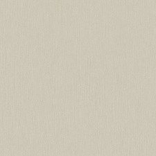 Creme/Beige/Taupe Traditional Wallcovering by JF Wallpapers