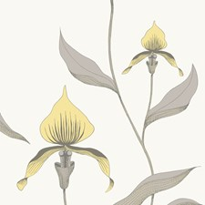 Yellow/White Botanical Wallcovering by Cole & Son Wallpaper