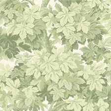 Olive Botanical Wallcovering by Cole & Son Wallpaper