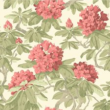 Coral Wallcovering by Cole & Son Wallpaper