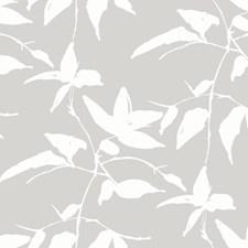 AF6508 Persimmon Leaf by York