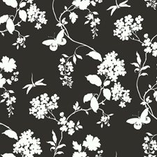 Black Ink/White Texture Wallcovering by York
