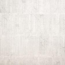 Grasberg Wallcovering by Innovations